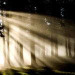 ポジティブ シンキングは本当に良いこと?光と闇は必ず表裏一体。負の感情を抑圧しないで。