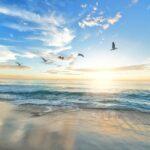 朝日が登る大海原