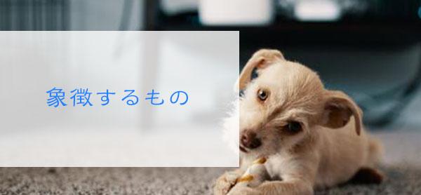 犬の夢が夢占いで象徴するもの