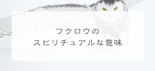 【金運アップ】フクロウのスピリチュアルな意味