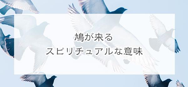 鳩が来るスピリチュアルな意味とは?